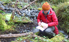 Laura Briscoe conducting research on bryophytes